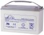 Аккумуляторная герметизированная свинцово-кислотная батарея LEOCH DJM 12100