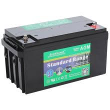 EverExceed ST-12100Аккумуляторная батарея EverExceed ST-12100